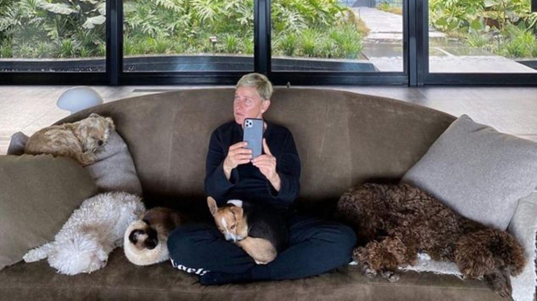 """Cómo Ellen DeGeneres pasó a ser """"la más malvada del mundo"""""""