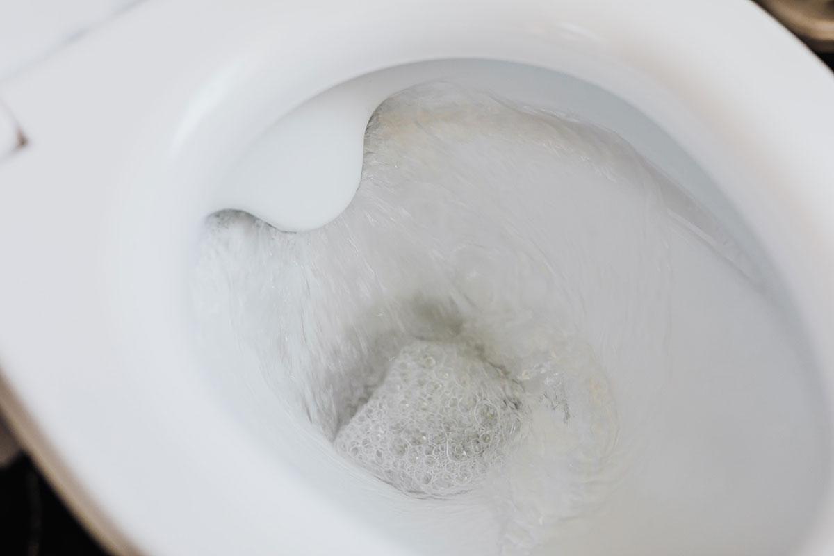 Estudio advierte que tirar la cadena del WC con la tapa abierta puede propagar el coronavirus