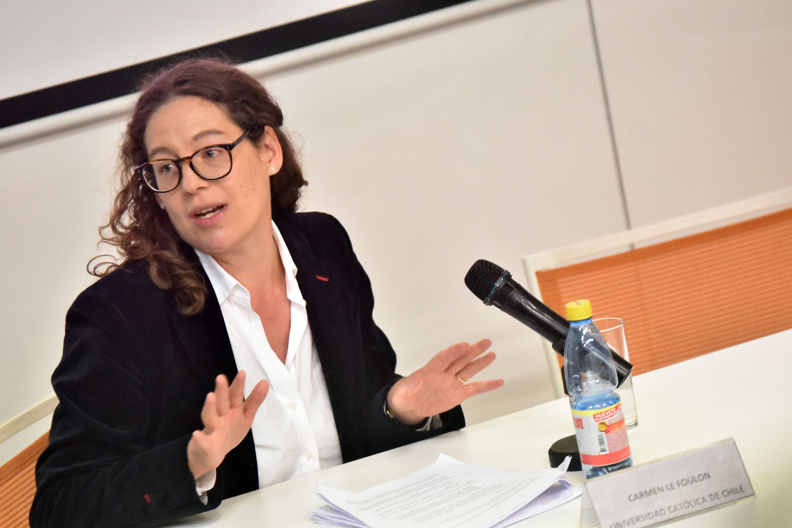 Carmen Le Foulon da contexto a la última entrega de la encuesta CEP